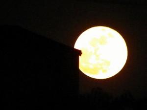月を題材にした演歌特集画像