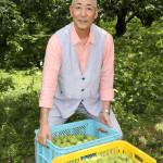 ■74歳の石塚ひろしがデビュー曲「越冬の酒」にちなんで梅酒づくりに初挑戦。原料の梅を埼玉・越生で調達。自ら収穫も