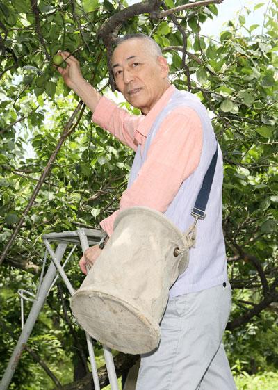 石塚ひろし(その2)